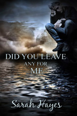 ARC Review: Did You Leave Any For Me, Sarah Hayes