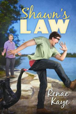 Shawn's Law, Renae Kaye