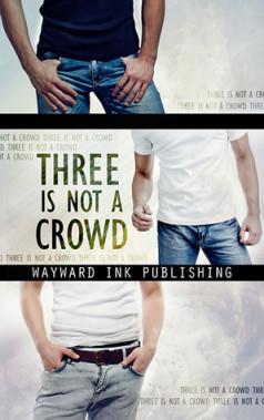 Three Is Not A Crowd : Wayward Ink Publishing Anthology